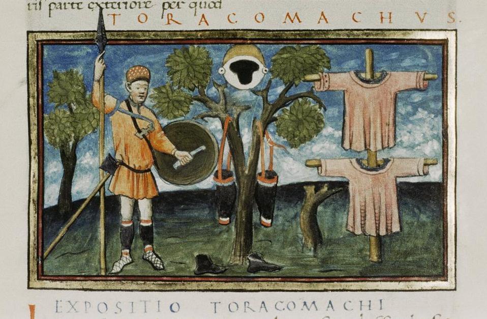 Торакомах Рис.1